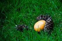 yellow plastic Easter egg lying next to pine cones in the grass