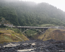 Coastal Highway Bridge with Forest in the Background