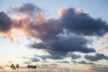 clouds at sunset over silhouettes of palm trees