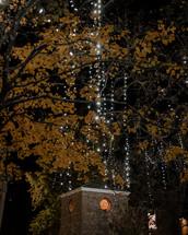 outdoor Christmas lights on trees