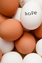 word hope on eggs