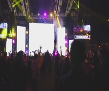cheering and jumping fans at a concert