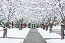 Archway of snow-covered trees along sidewalk leading to front door of school.
