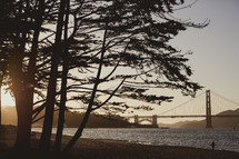 Golden Gate Bridge through the trees at sunset.