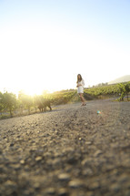 distant woman standing in a vineyard
