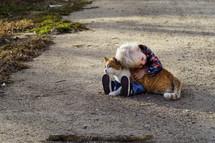 toddler boy hugging a cat