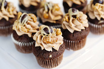 Tray of chocolate cupcakes with maple frosting and nuts on top.