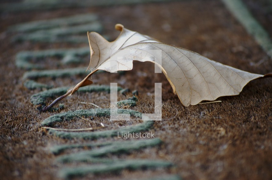 Fall leaf on a welcome mat.