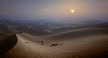 desert sands at sunset