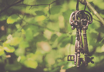 skeleton keys hanging on a branch