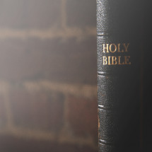 spine of the Holy Bible