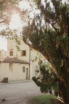 gravel driveway and tree in front of a house in Italy