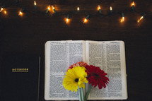 gerber daisies on a Bible and a notebook on a wood desk