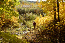 boys exploring a creek in fall
