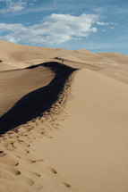 exploring sand dunes