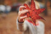a boy child holding a fall leaf