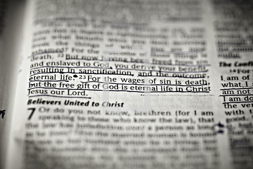 A closeup scripture verse of Romans 6:23