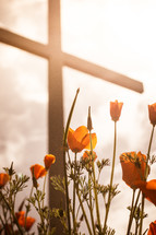 flowers growing under a cross glowing in sunlight