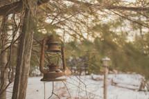 rusty lantern hanging in a tree