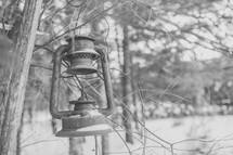 rusty lantern hanging on a tree