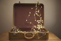 lights in a case