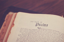 A Bible open to the Book of Psalms.