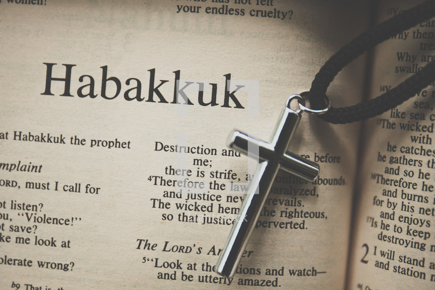 Habakkuk and a cross necklace