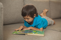 toddler reading a book