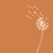 Hand drawn dandelion flower blowing in the wind.