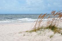 Sea oats edge the beach.