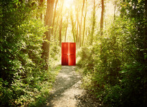 a door in a forest