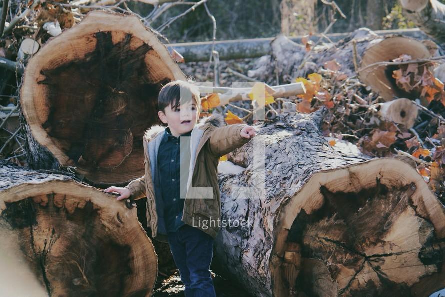 Boy child next to cut trees.