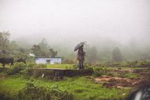 shepherd standing in the rain