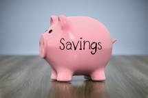 piggy bank with word savings