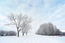 a snowy winters day on grandpas farm