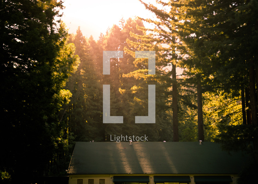 sunlight on a roof
