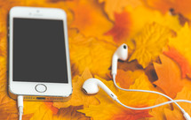 earbuds and iPhone on fall leaves