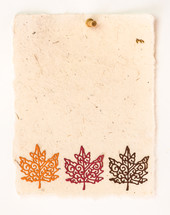 border of fall leaves on a blank piece of paper