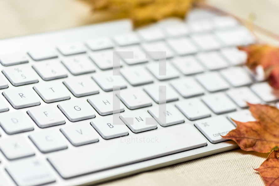 keyboard and fall leaves