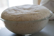 rising dough in a bowl