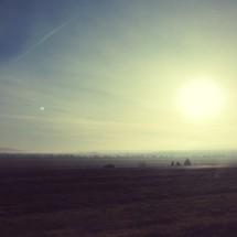 Grassy field at sunrise.