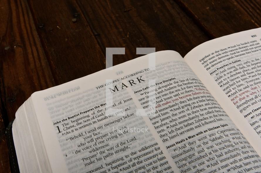 Scripture Titles - Mark