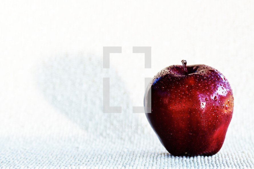 A red apple with waterdrops isolated on a while textured background