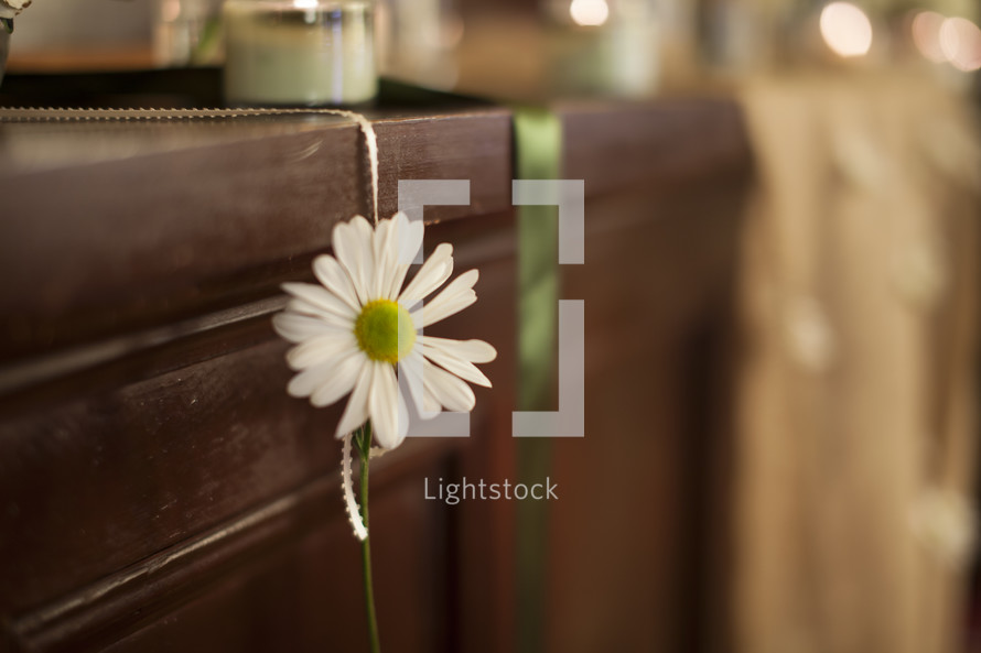 white daisy hanging on a ribbon