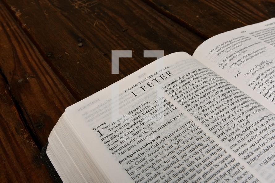 Scripture Titles - 1 Peter