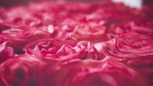 red roses textured background