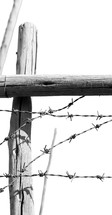 barbed wire on a wooden post