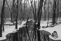 snow along the banks of a stream