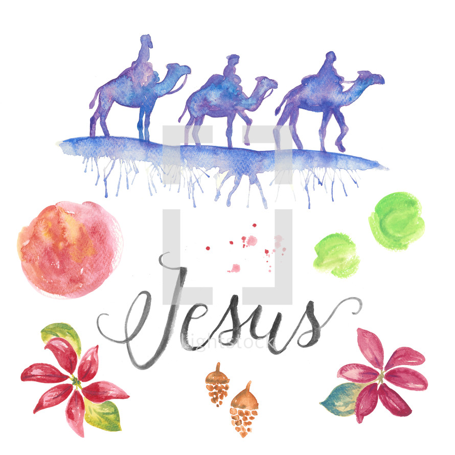 The three wise men for Christmas. Jesus hand lettering and water color holiday pack with poinsettias, pine cones, brush texture and splatters. King, camels, Nativity, 3 wise men..
