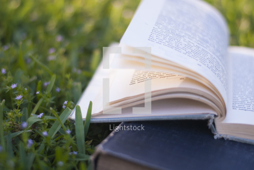 books lying in the grass